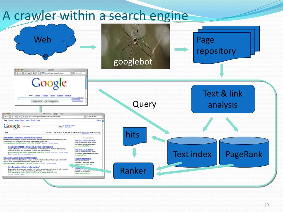 A crawler within a search engine 29 Web Text indexPageRank Page repository googlebot Text & link analysis Query hits Ranker