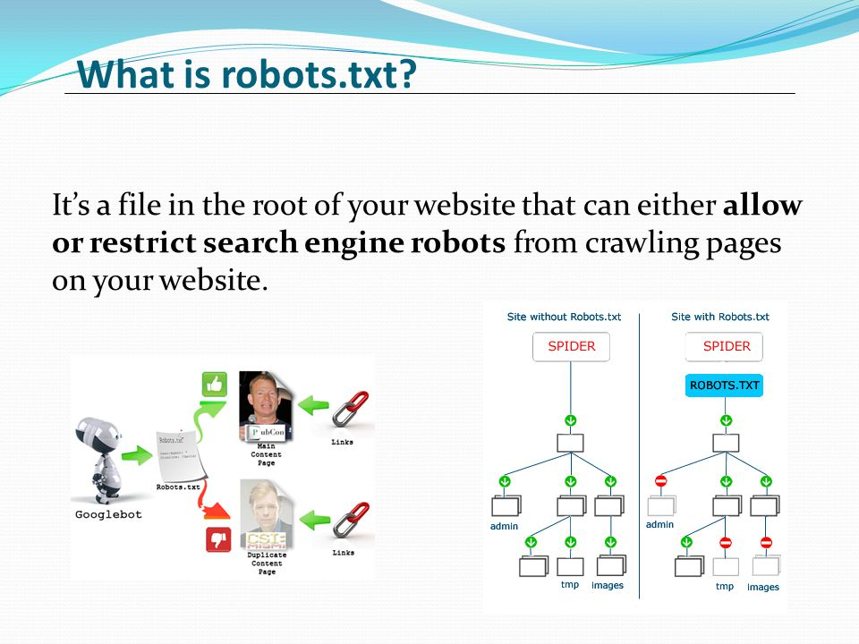 What is robots.txt.