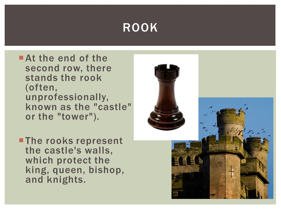  At the end of the second row, there stands the rook (often, unprofessionally, known as the