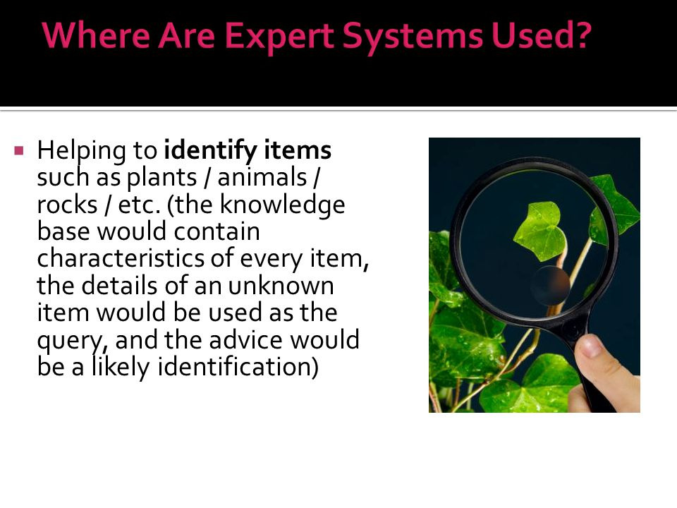  Helping to identify items such as plants / animals / rocks / etc. (the knowledge base would contain characteristics of every item, the details of an
