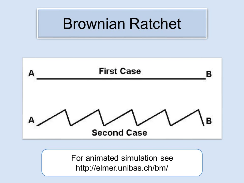 Brownian Ratchet For animated simulation see http://elmer.unibas.ch/bm/
