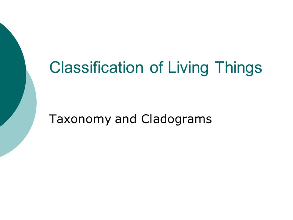 Classification of Living Things Taxonomy and Cladograms