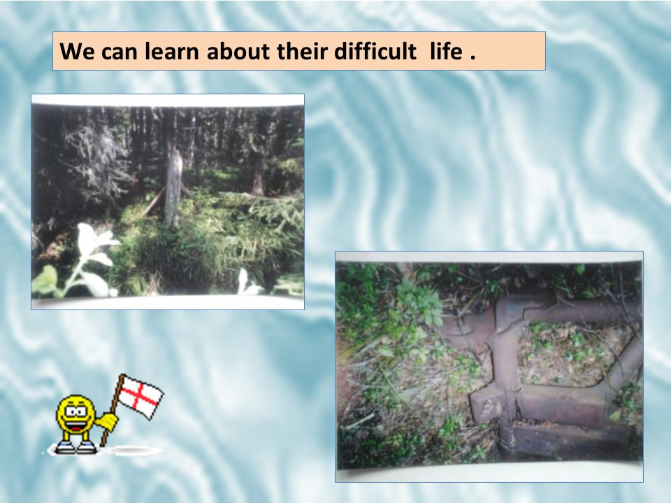 We can learn about their difficult life.