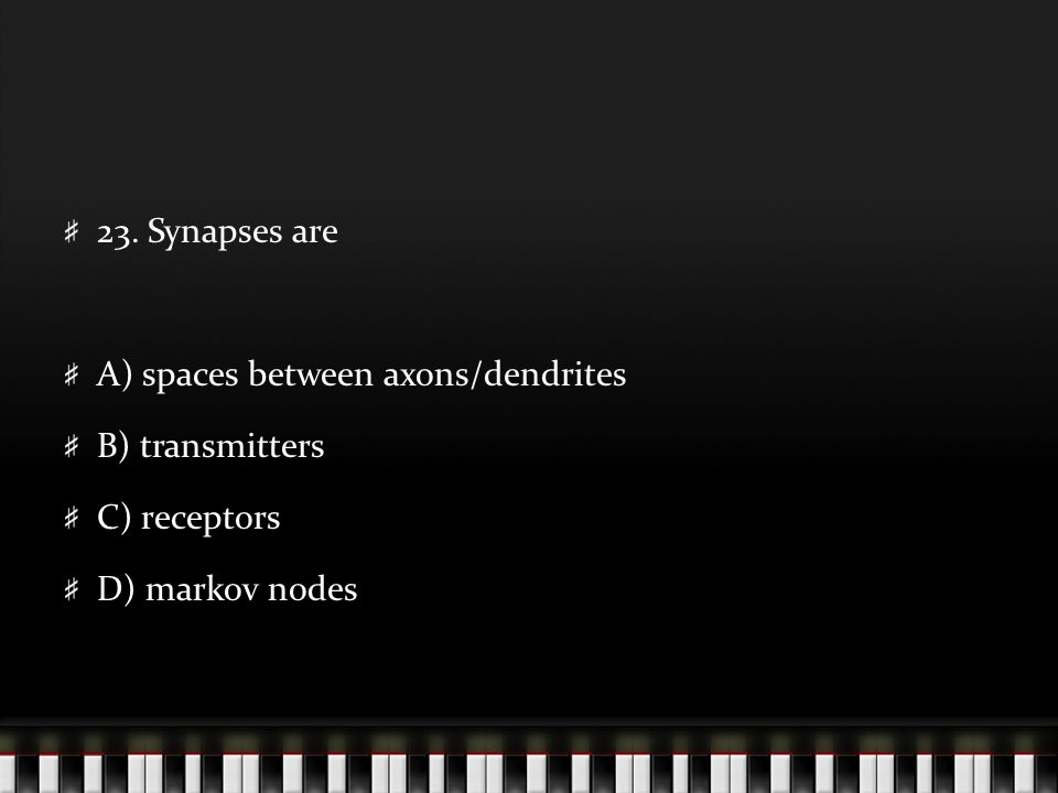 23. Synapses are A) spaces between axons/dendrites B) transmitters C) receptors D) markov nodes