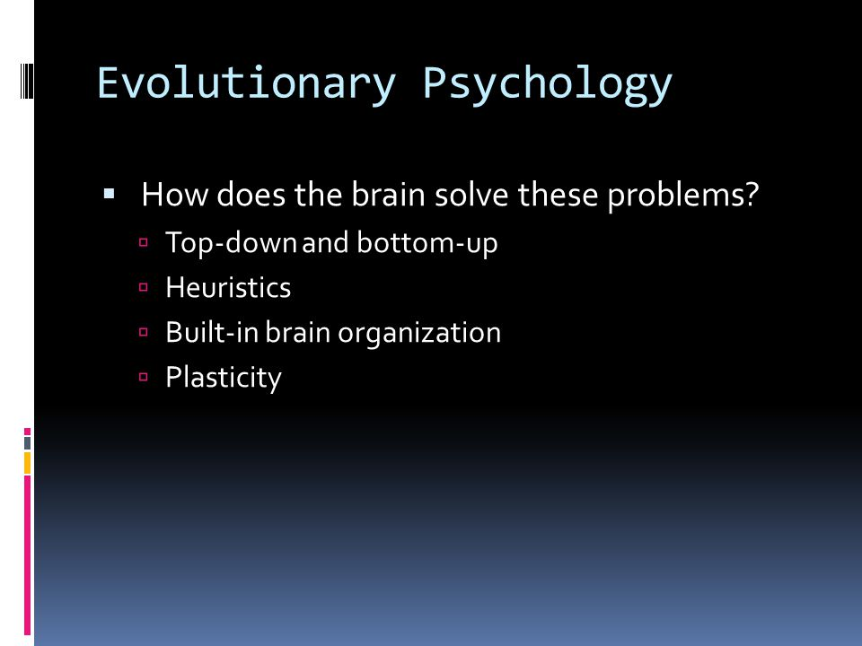 Evolutionary Psychology  What problems must the brain solve to perceive accurately.