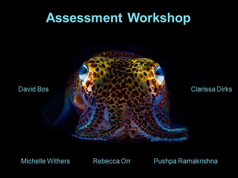 Assessment Workshop Michelle Withers David BosClarissa Dirks Rebecca OrrPushpa Ramakrishna