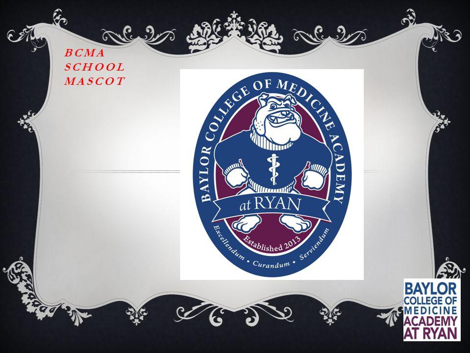 BCMA SCHOOL MASCOT