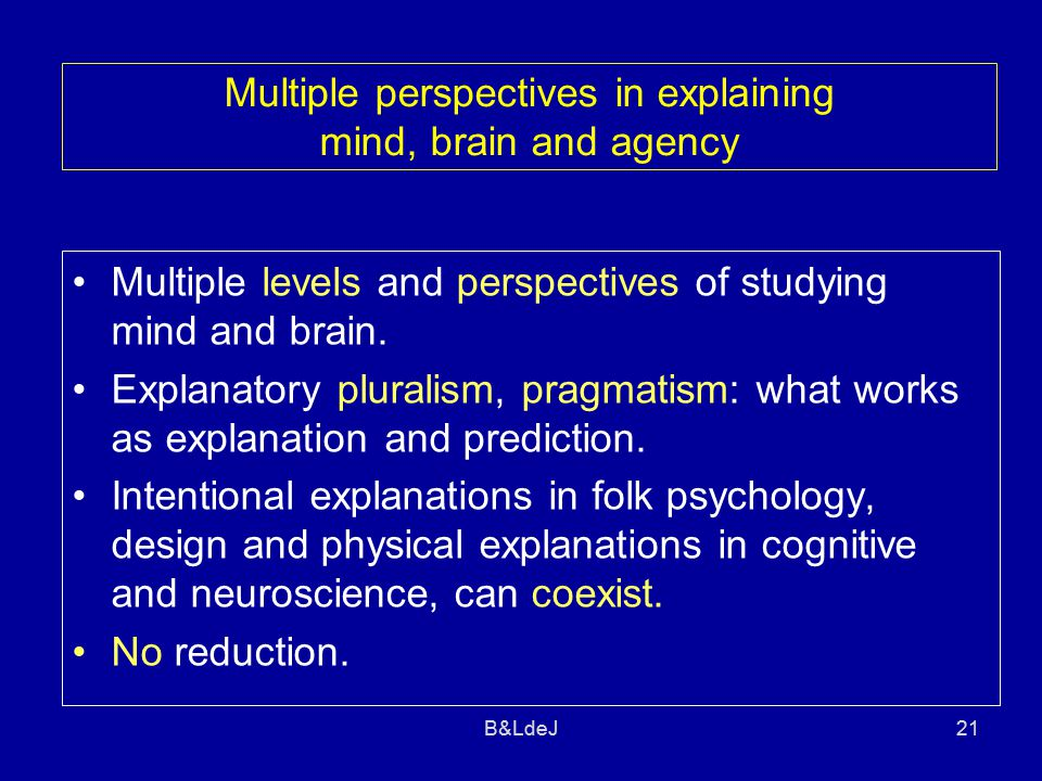 B&LdeJ21 Multiple perspectives in explaining mind, brain and agency Multiple levels and perspectives of studying mind and brain.