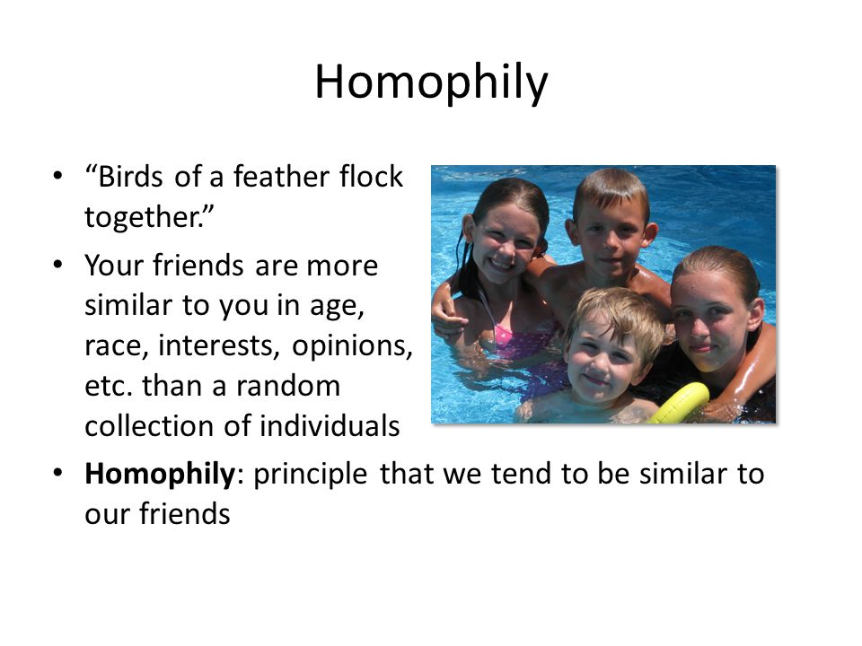 Homophily Birds of a feather flock together. Your friends are more similar to you in age, race, interests, opinions, etc.