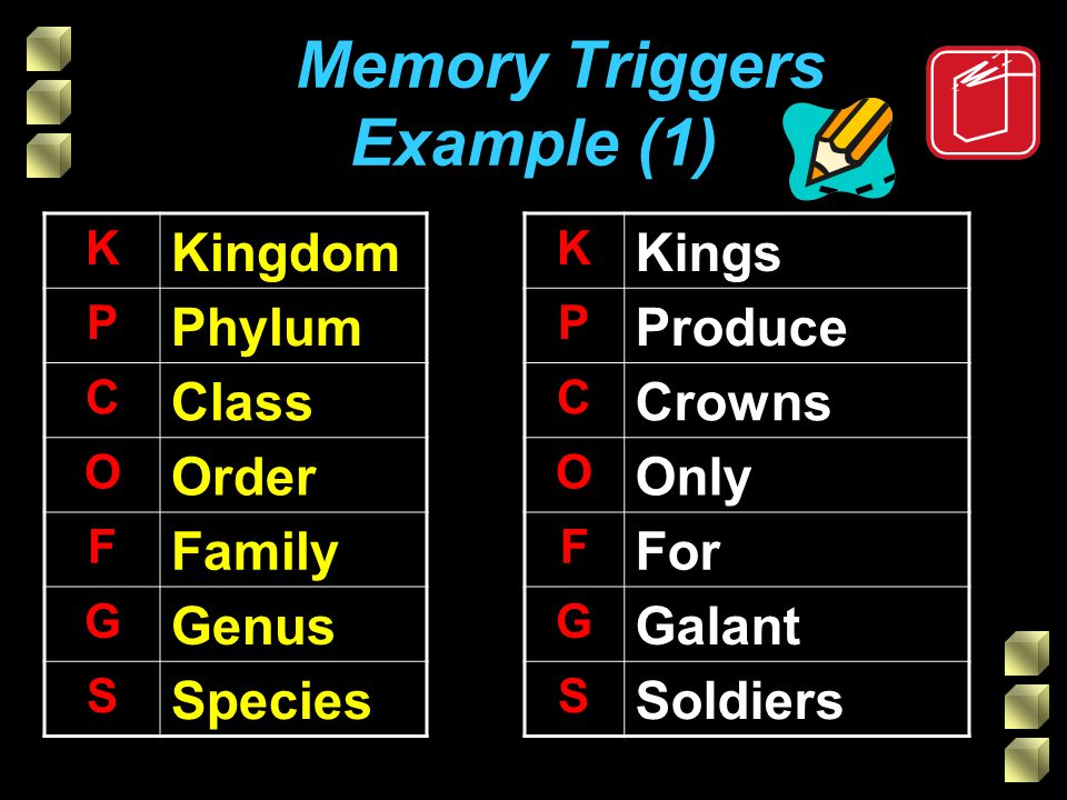 Memory Triggers Example (1) K Kingdom P Phylum C Class O Order F Family G Genus S Species K Kings P Produce C Crowns O Only F For G Galant S Soldiers