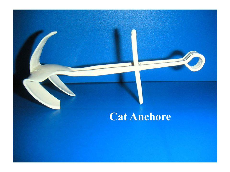 Cat Anchore