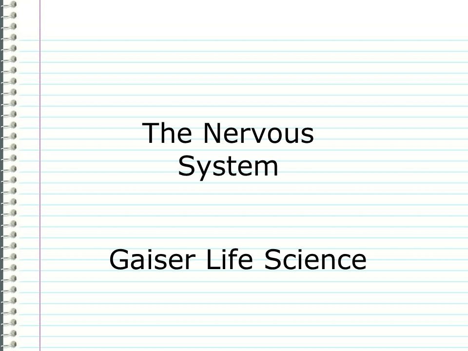 The Nervous System Gaiser Life Science