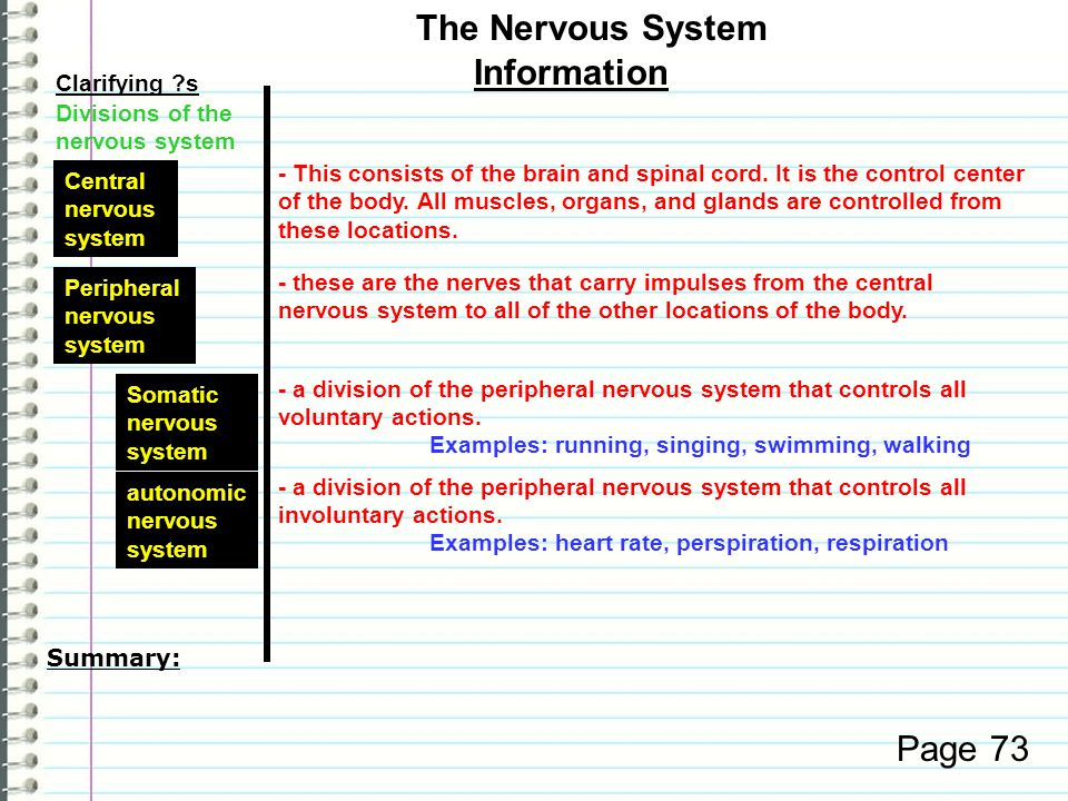 Clarifying s Information Page 72 The Nervous System Examples: Heart rate may increase.