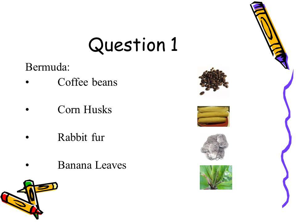 Culture Quiz 2 Crafts