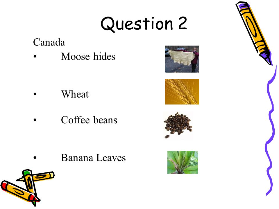 Answer is Banana Leaves 5 points