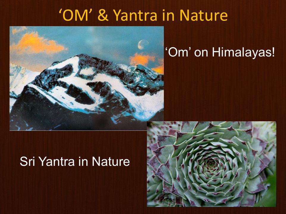 Cymatics on 'OM' sound