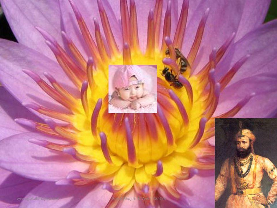 www.gokulbhajan.comGokul Bhajan & Vedic Studies23 Appearance of Srimathi Radha Rani (Sept 7 – Sunday)