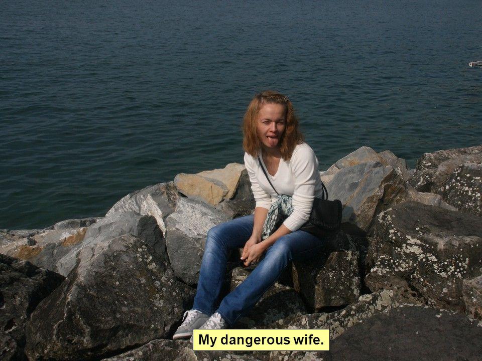 My dangerous wife.