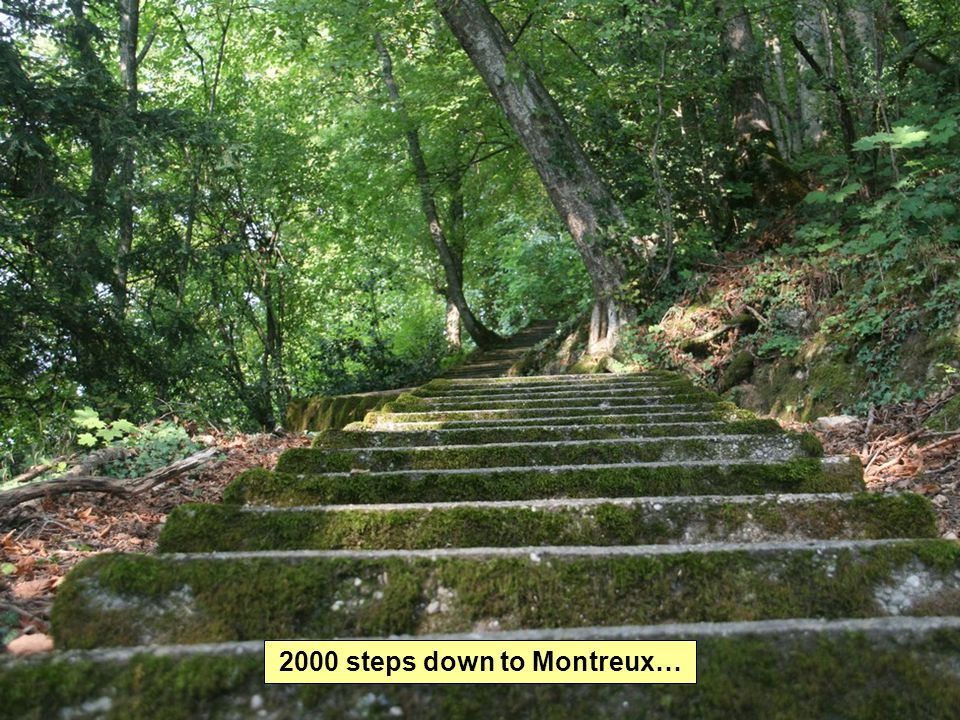 2000 steps down to Montreux…
