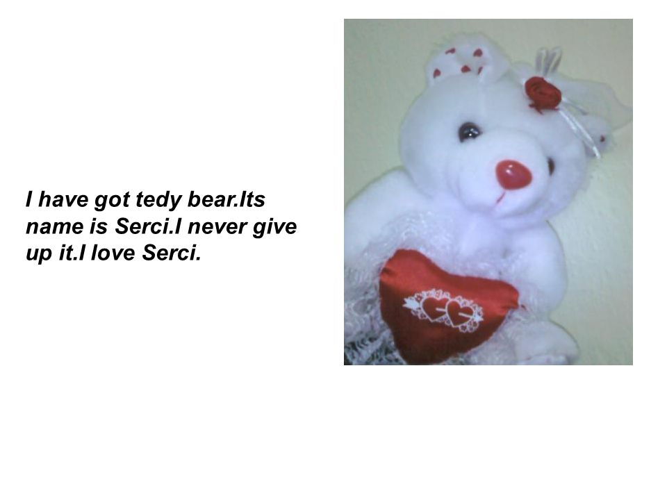 I have got tedy bear.Its name is Serci.I never give up it.I love Serci.