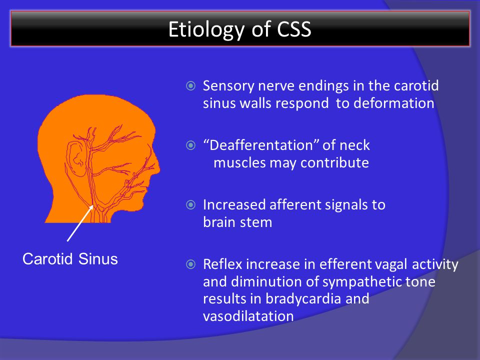 Etiology of CSS  Sensory nerve endings in the carotid sinus walls respond to deformation  Deafferentation of neck muscles may contribute  Increased afferent signals to brain stem  Reflex increase in efferent vagal activity and diminution of sympathetic tone results in bradycardia and vasodilatation Carotid Sinus