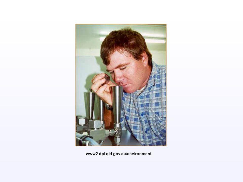 www2.dpi.qld.gov.au/environment