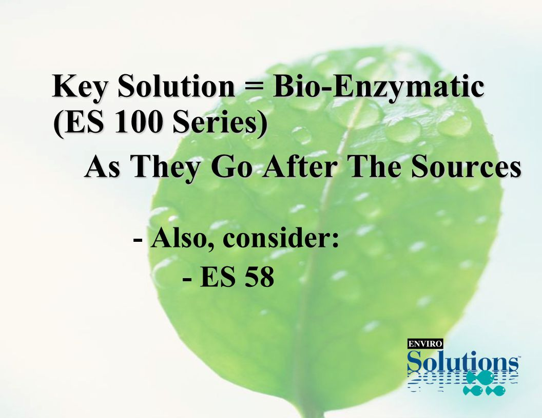 Key Solution = Bio-Enzymatic (ES 100 Series) Key Solution = Bio-Enzymatic (ES 100 Series) As They Go After The Sources - Also, consider: - ES 58