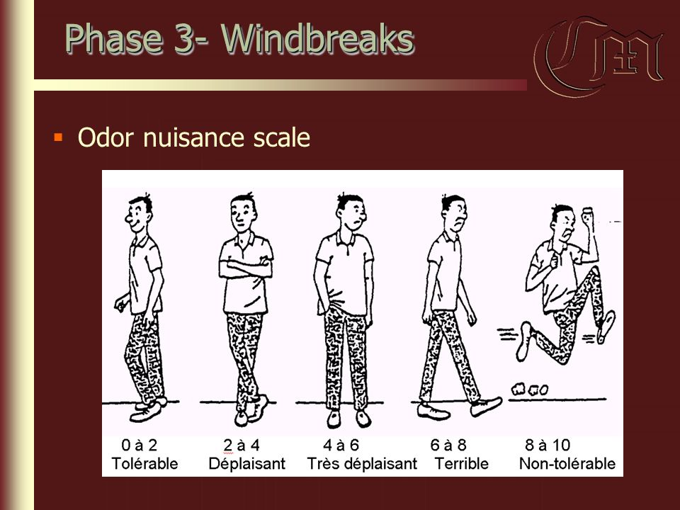 Phase 3- Windbreaks  Odor nuisance scale