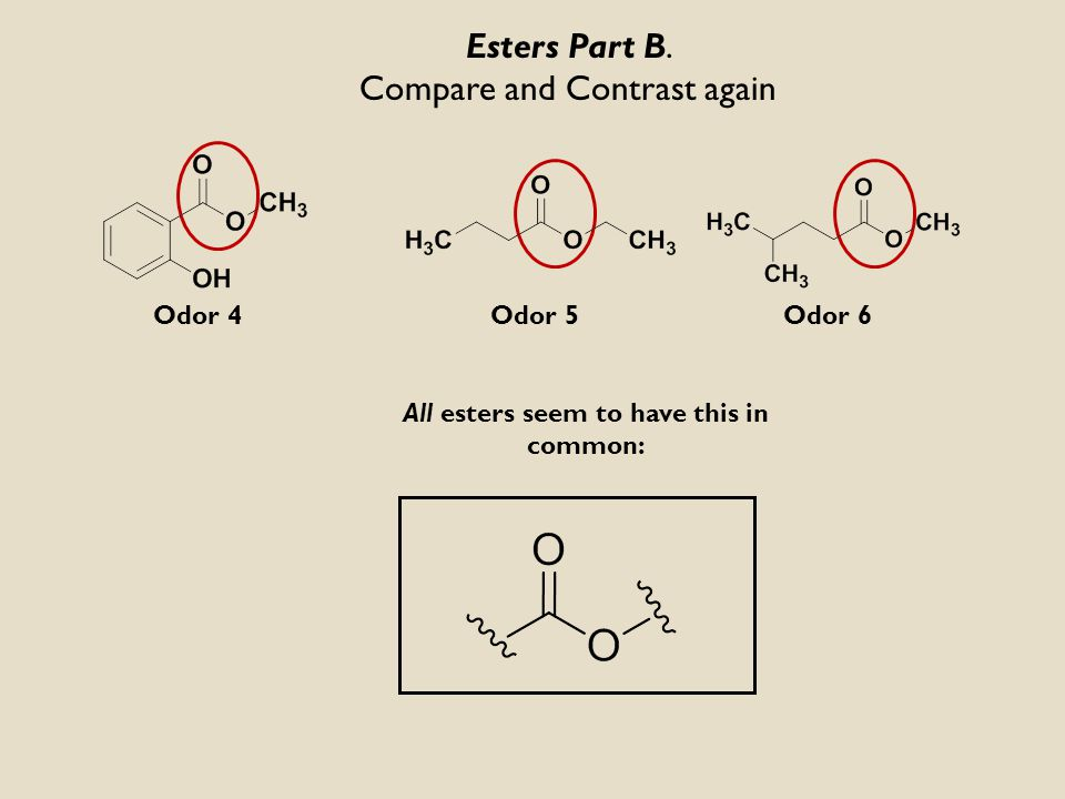 Part B. Esters Molecular StructureDescription and association of odor Odor identification Part A.