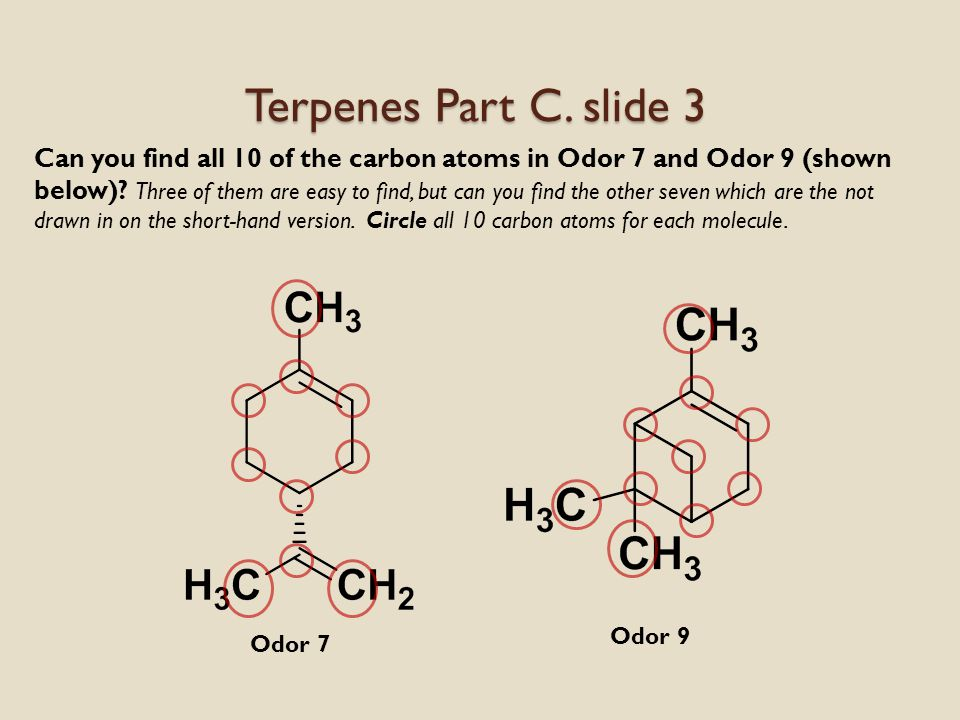 1.Did you observe that two of the terpene odors smelled similar.