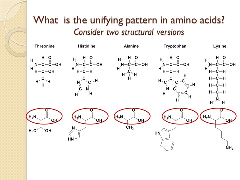 Why introduce bond line organic structures? They highlight only the important parts of a molecule They are easier to use for discovering patterns To d