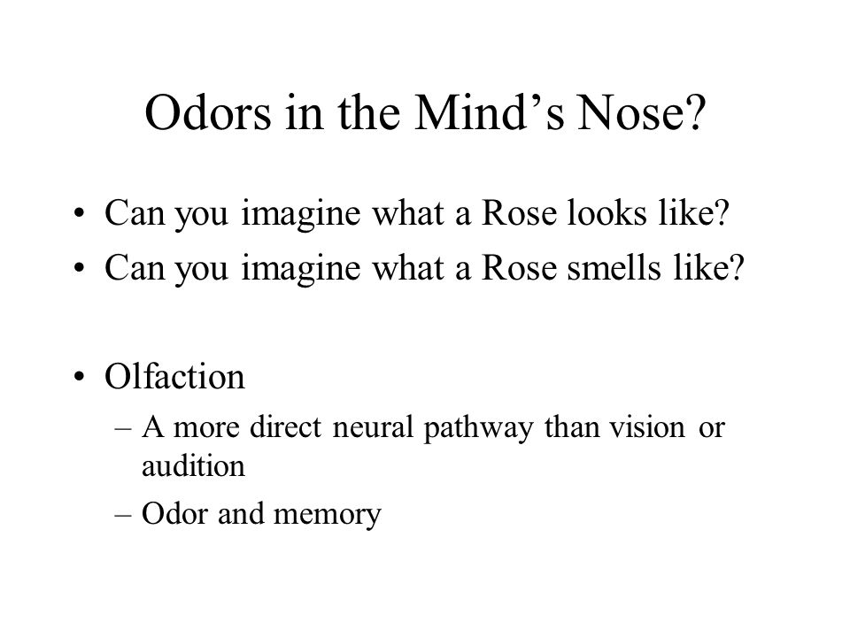 Odors in the Mind's Nose? Can you imagine what a Rose looks like? Can you imagine what a Rose smells like? Olfaction –A more direct neural pathway tha