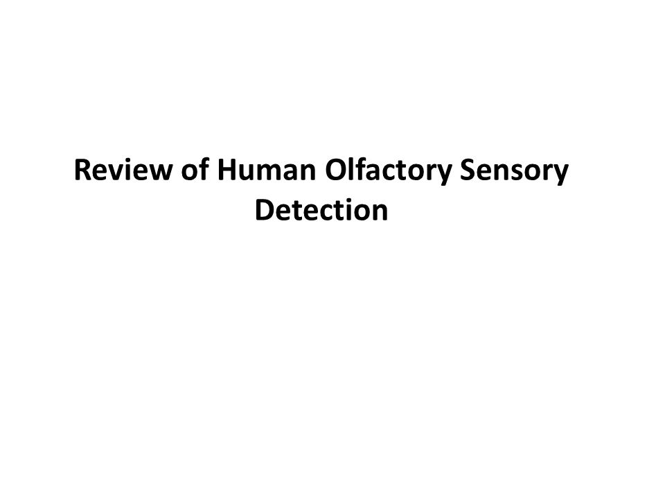 Review of Human Olfactory Sensory Detection