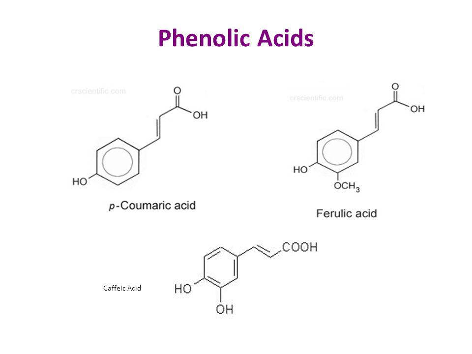 Phenolic Acids Caffeic Acid