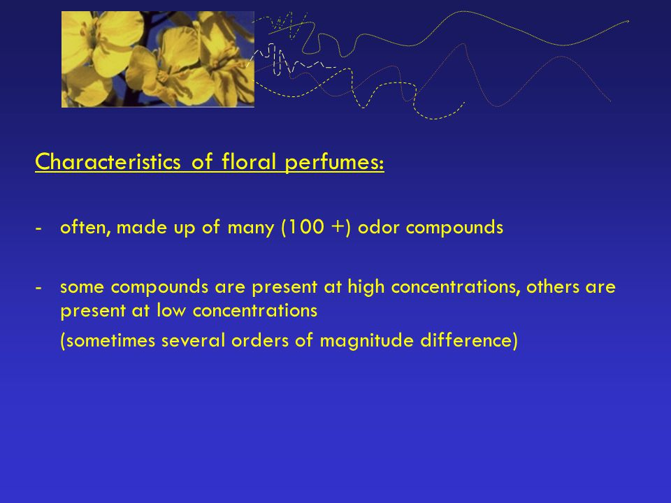 Characteristics of floral perfumes: -often, made up of many (100 +) odor compounds -some compounds are present at high concentrations, others are pres