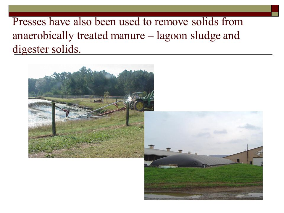 Presses have also been used to remove solids from anaerobically treated manure – lagoon sludge and digester solids.
