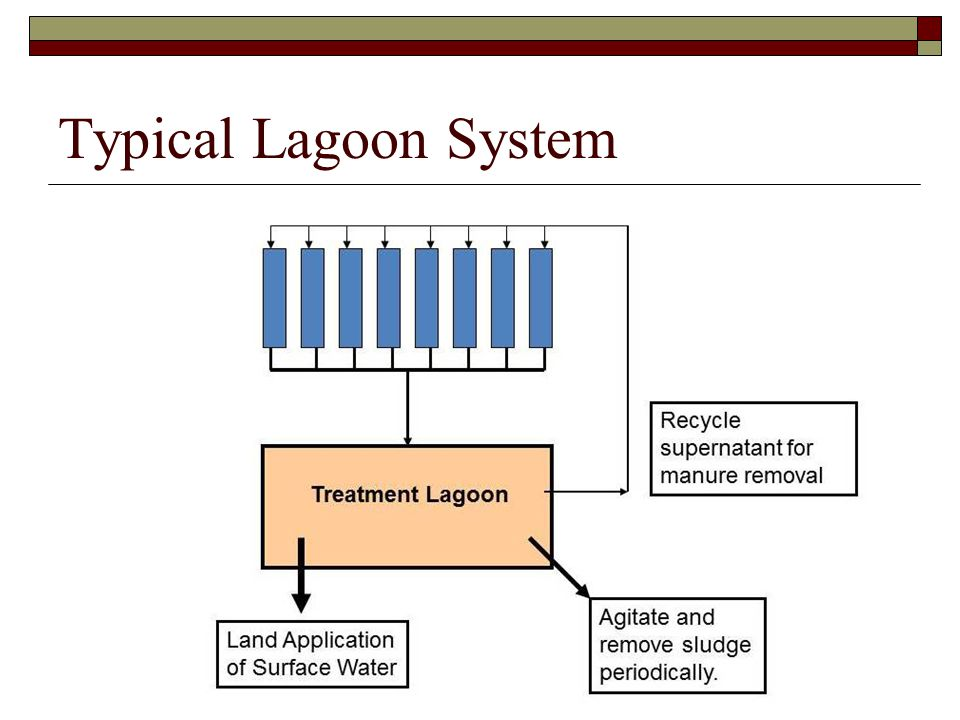 Typical Lagoon System