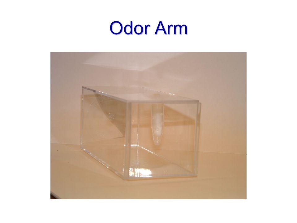 Odor Arm