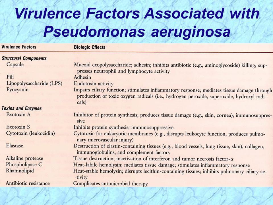 Virulence Factors Associated with Pseudomonas aeruginosa