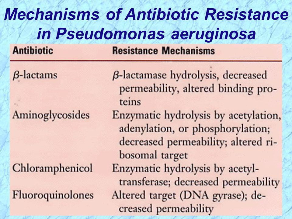 Mechanisms of Antibiotic Resistance in Pseudomonas aeruginosa