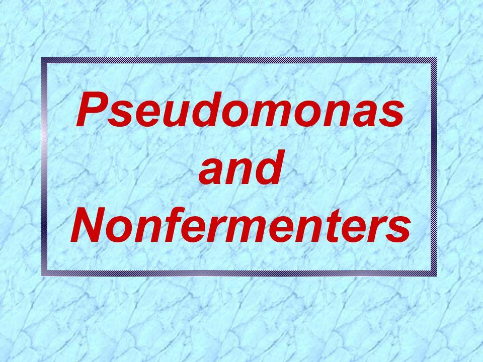 Pseudomonas and Nonfermenters