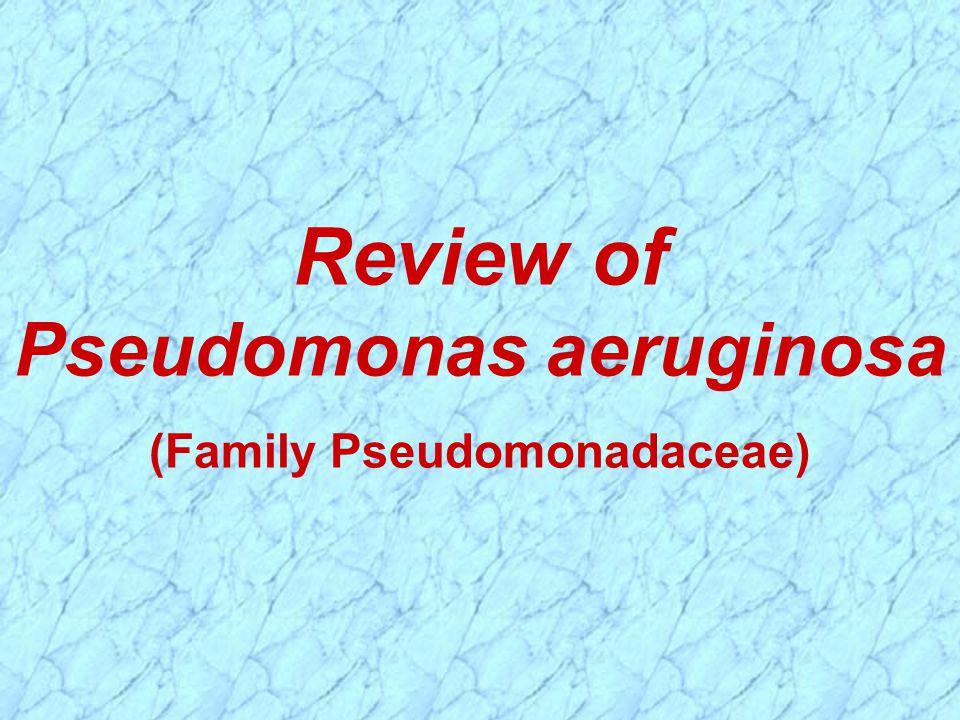 Review of Pseudomonas aeruginosa (Family Pseudomonadaceae)