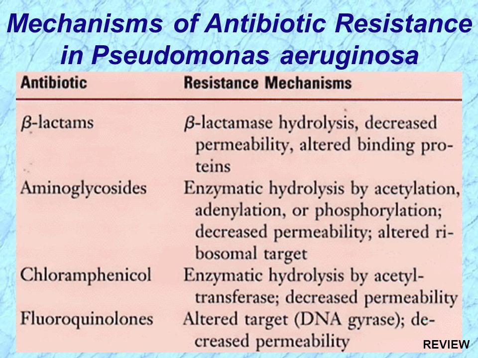 Mechanisms of Antibiotic Resistance in Pseudomonas aeruginosa REVIEW
