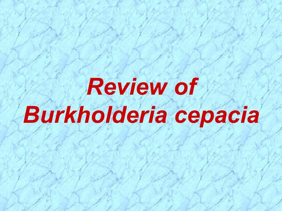 Review of Burkholderia cepacia