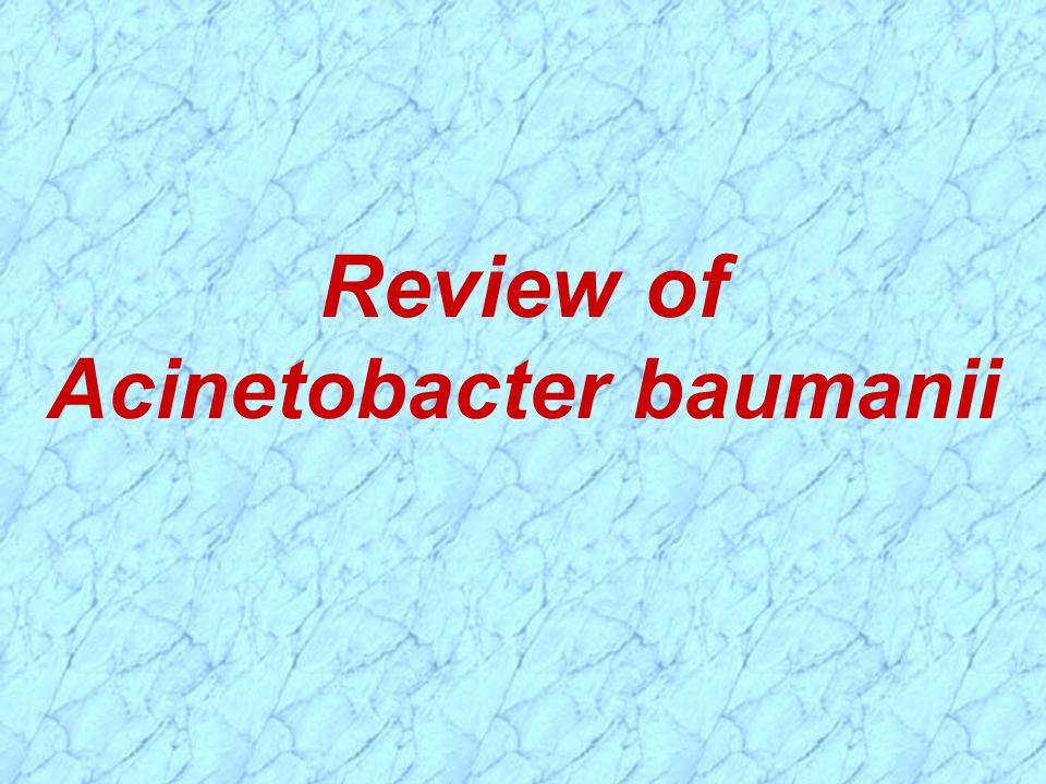 Review of Acinetobacter baumanii