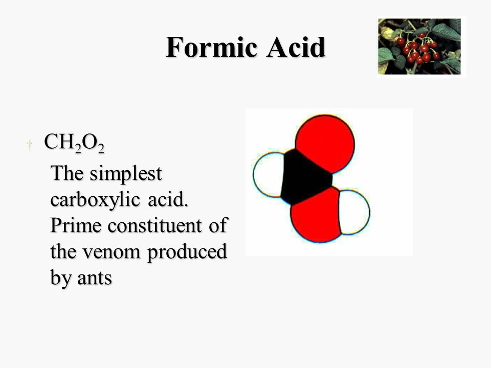 Formic Acid † CH 2 O 2 The simplest carboxylic acid.