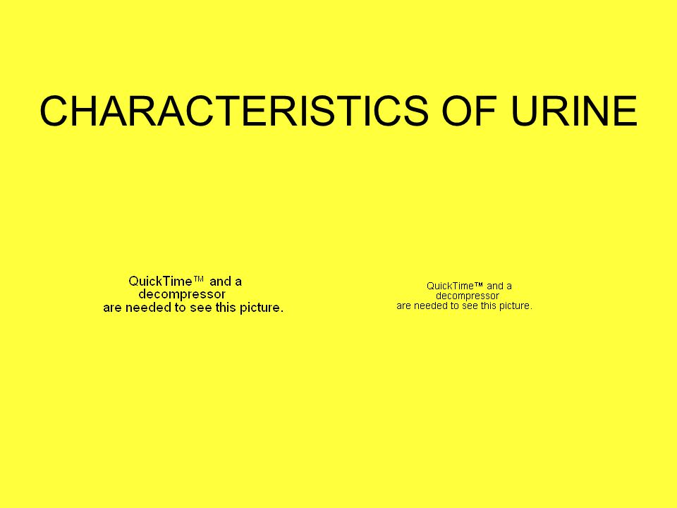 Chemical Tests for Urine - pH Average Range: 4.5 - 8.0 Average: 6.0 Affected by diet & changes in body metabolism Acidic urine: -high protein diet or lots of whole wheat = acid forming foods -diabetes Alkaline urine: -high veggie or dairy diet = base forming foods -UTI Either: medications, kidney stones (renal calculi)