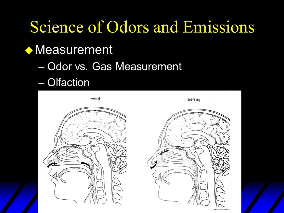 Science of Odors and Emissions u Measurement –Odor vs. Gas Measurement –Olfaction