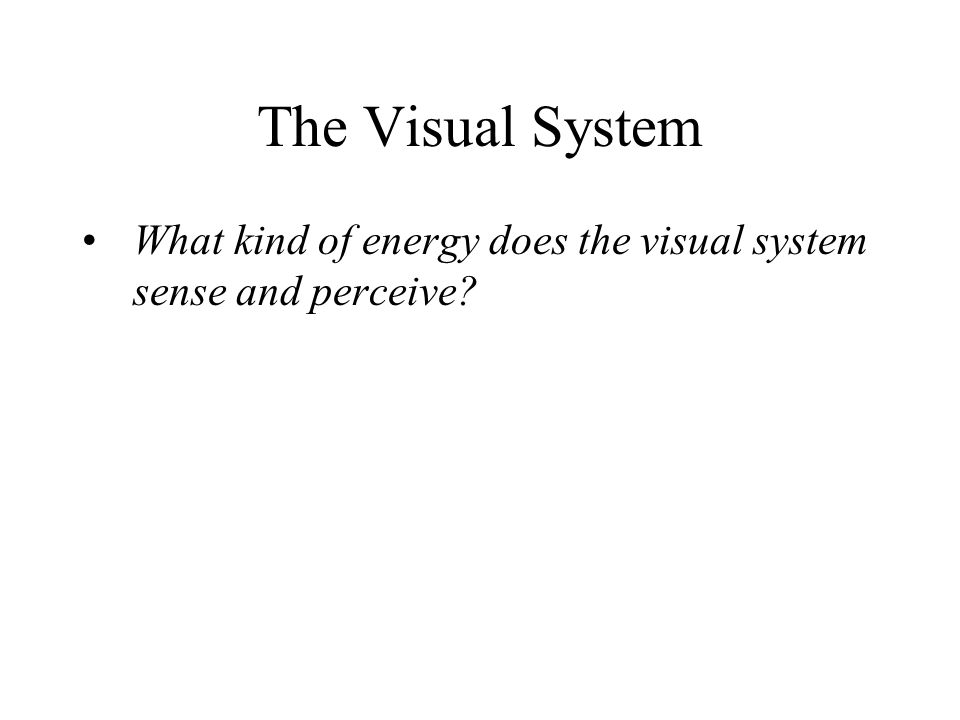 What kind of energy does the visual system sense and perceive? The Visual System