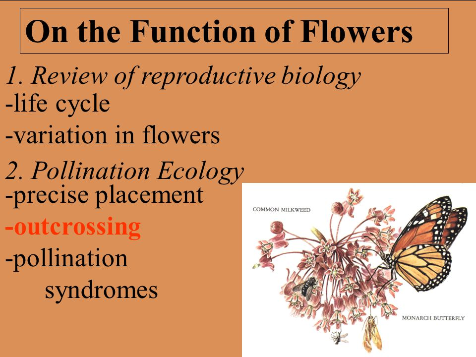 1. Review of reproductive biology 2.